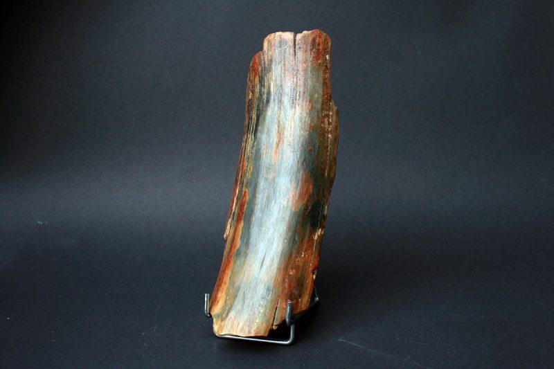 mamutova kljova