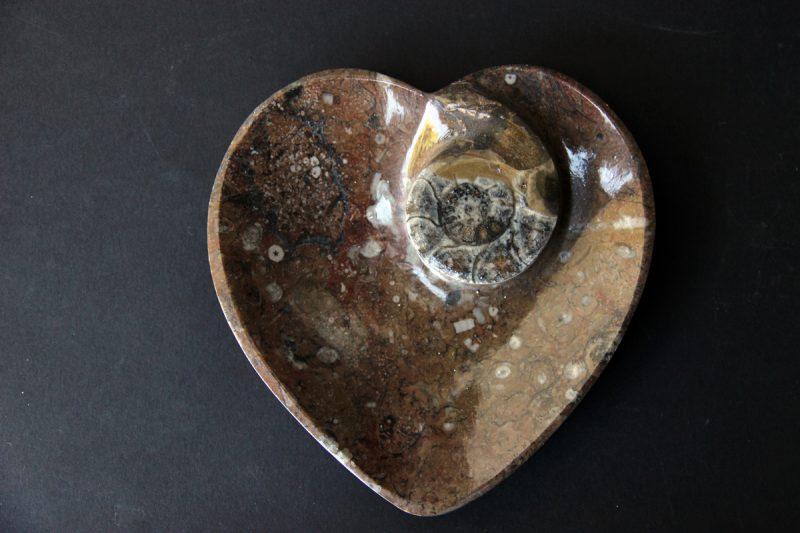 Pepeljara s fosilima