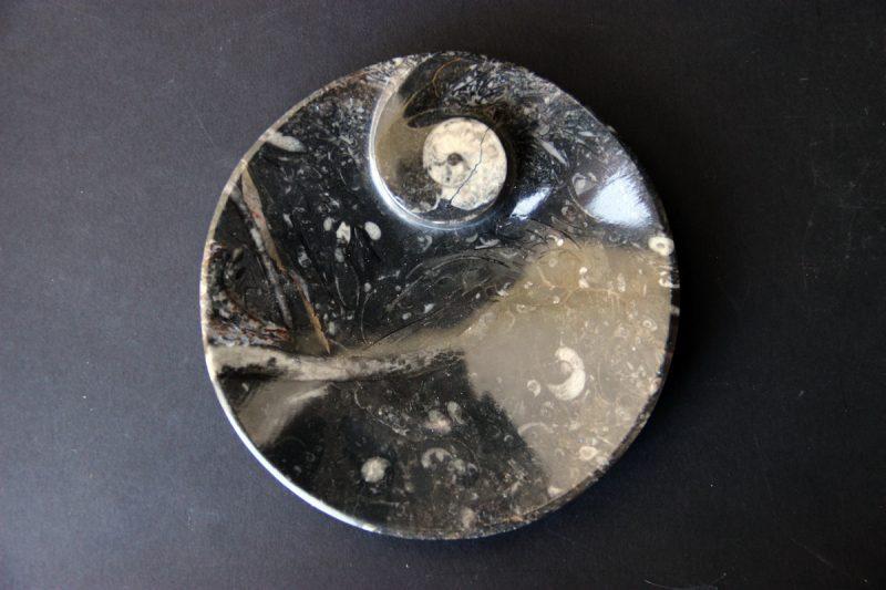 Pepeljara s amonitom