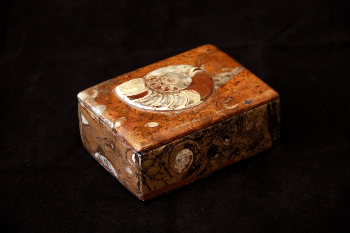 kutija s amonitom